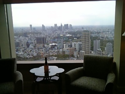 View_form_riz